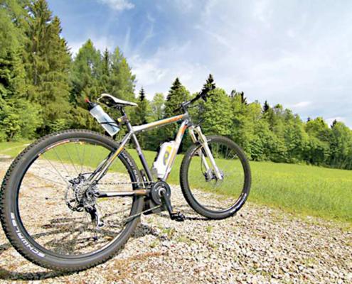 Fahrrad steht alleine auf der Waldstrasse mit blauen Himmel und tiefgrüner Wiese und Bäumen