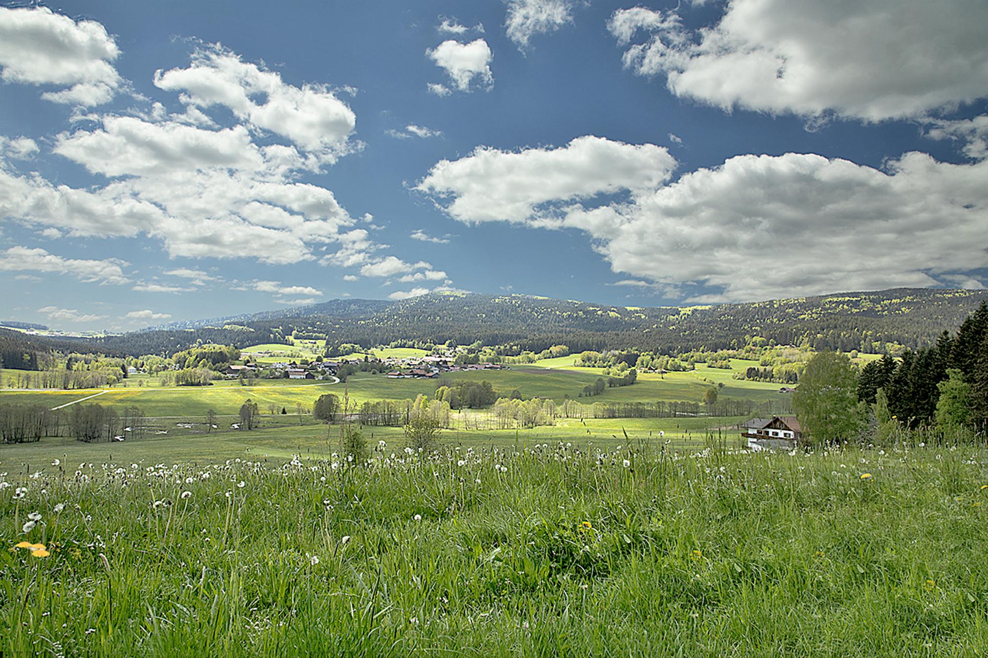 Ein Ort mit grünen Wiesen und weißblauen Himmel