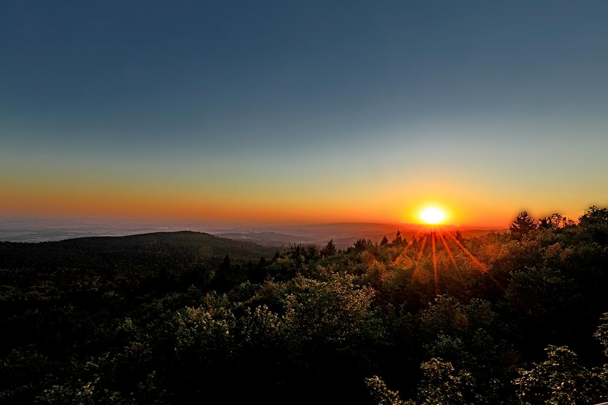 Sonnenuntergang auf einem Berg mit Aussicht undmit vielen Bäumen