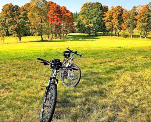 Zwei Ebikes in einer Herbstlandschaft mit bunten Bäumen und einer großen Wiese