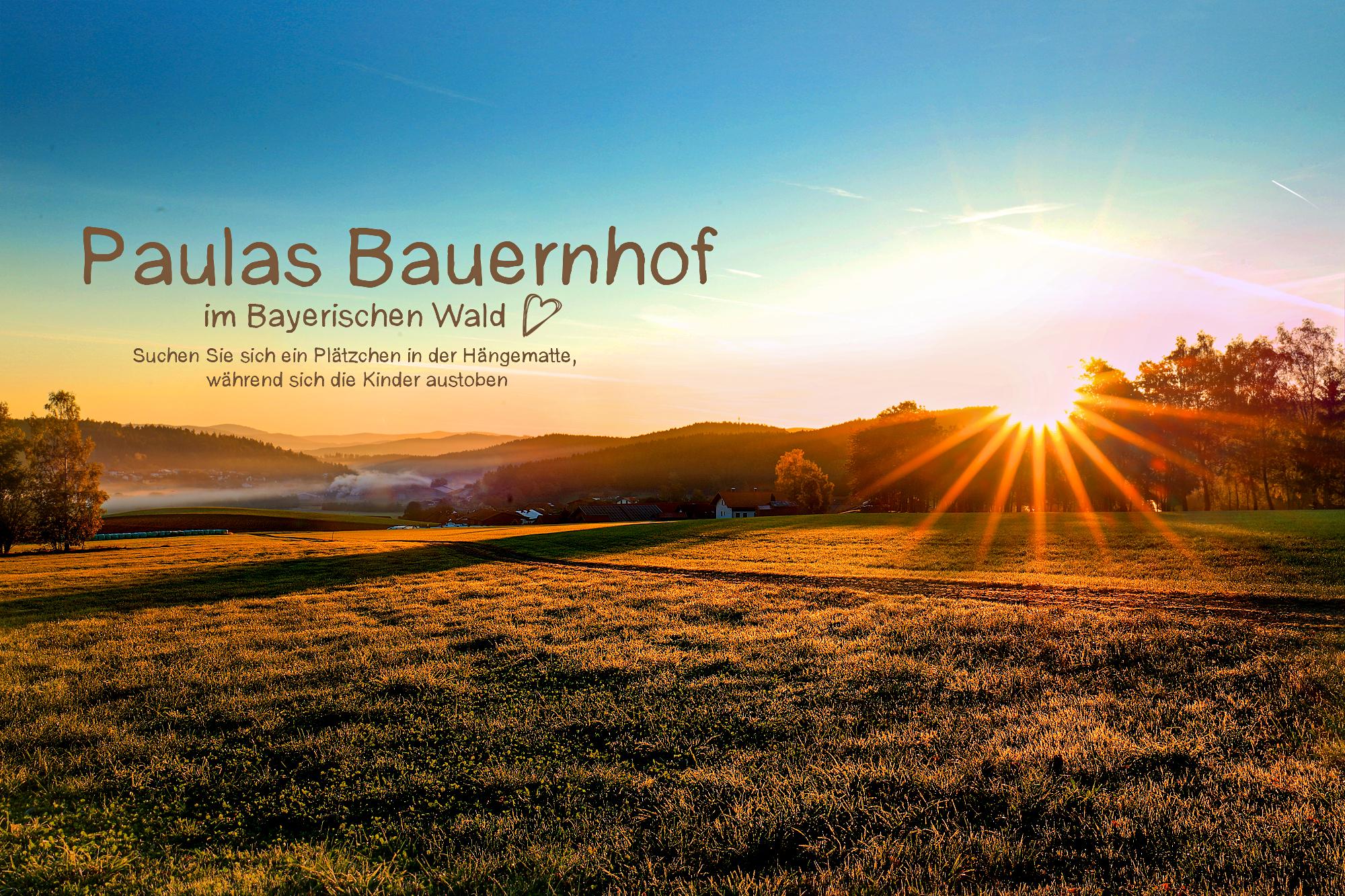 Sonnenaufgang mit blauen Himmel auf dem Land